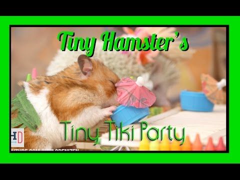 Here's Your Invitation To A Tiny Hamster Tiki Party
