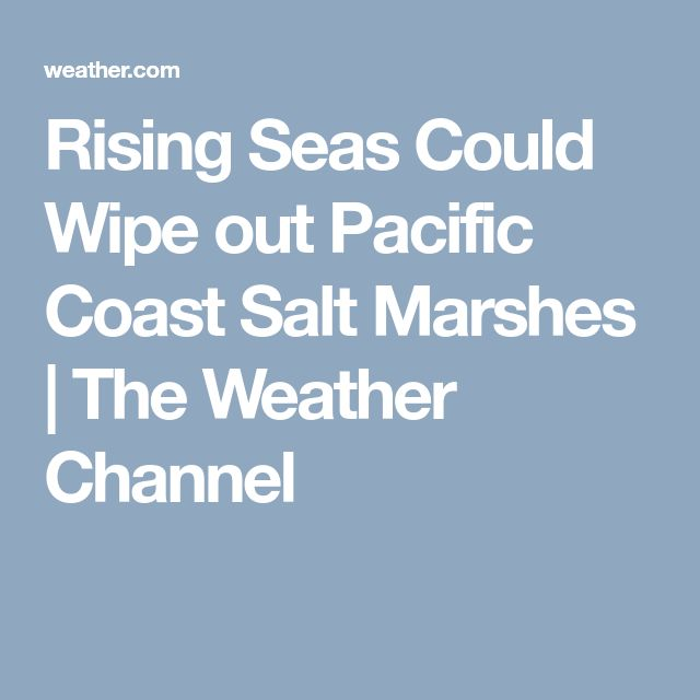 Rising Seas Could Wipe out Pacific Coast Salt Marshes | The Weather Channel