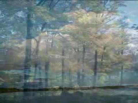 Danut Aschilean - Mi-e dor de Tine (+playlist)