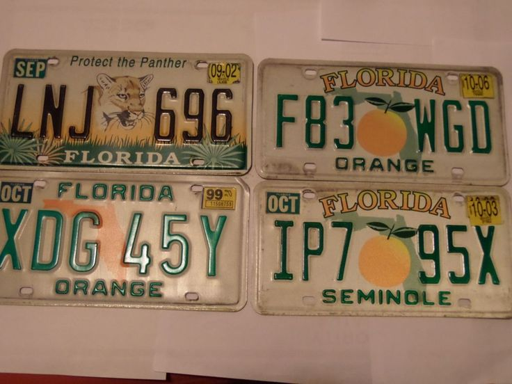 LOT OF 6 FLORIDA LICENSE PLATES PROTECT THE PANTHER