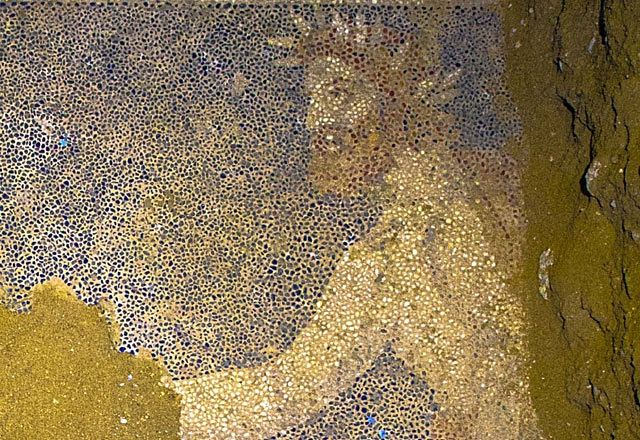 The profile of the bearded man in the chariot suggests Philip II. He wears a laurel wreath and right side of his face is hidden from view. Philip lost his right eye and also won a wreath at the Olympic Games. Stunning Mosaic Floor Uncovered in Greece's Mystery Tomb : Discovery News