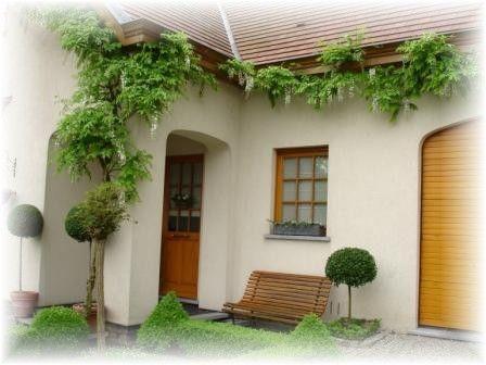 Witte wisteria in de voortuin