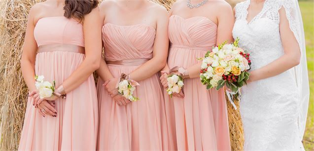 Bridesmaids in Pink Gowns #fashion #bridesmaids #bridesmaiddresses