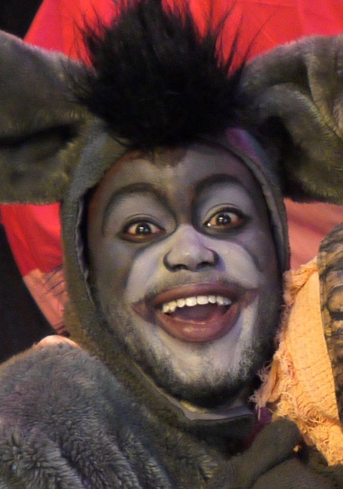 Shrek the Musical, Donkey: I combined the look of Donkey from the animated series and contours to the actor's face.  By show time his real beard was gone and we had to use a liquid make up to keep the white from absorbing into his skin.