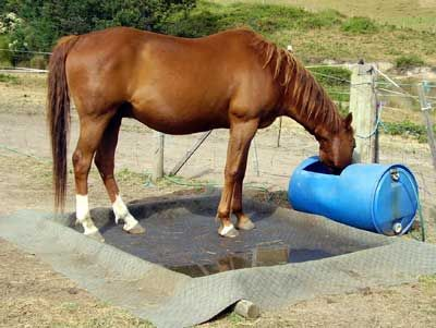 Natural Horse World Hoofcare - a good, cheap way to make a soaking pool for barefoot horses