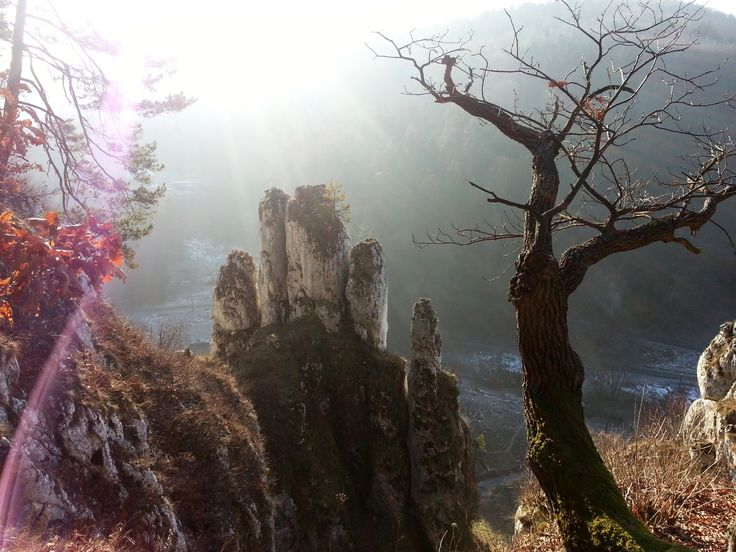 Ojcowski National Park - the last day of year 2012