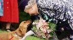 In pictures: The Queen's corgis