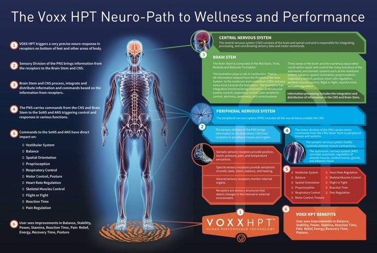 The science and study how our Voxx products work to produce , pain free, stability, balance and increased range of motion