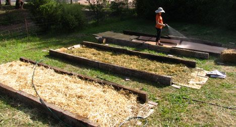 this is how I did my current plot.. with logs for edges.  don't know if I'll need cardboard again if I use deeper mulch.