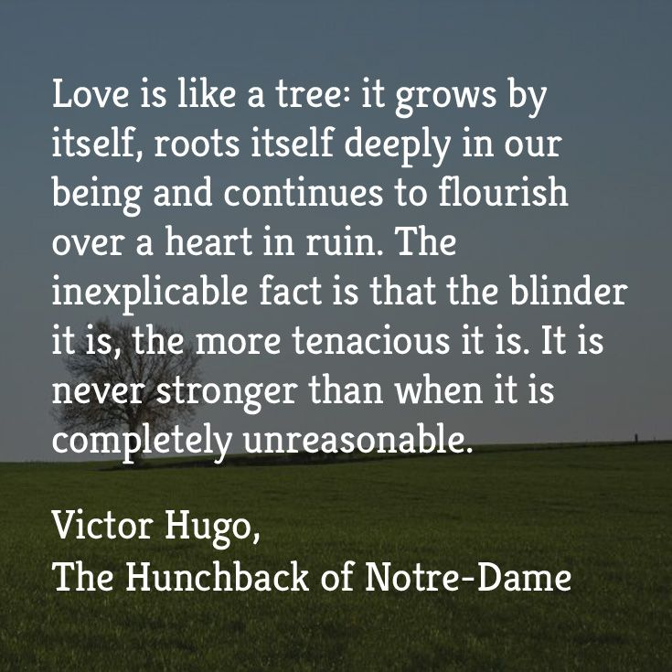 """""""Love is like a tree: it grows by itself, roots itself deeply in our being and continues to flourish over a heart in ruin. The inexplicable fact is that the blinder it is, the more tenacious it is. It is never stronger than when it is completely unreasonable.""""  ― Victor Hugo, The Hunchback of Notre-Dame   Listen now with Audio Book Contractors!"""