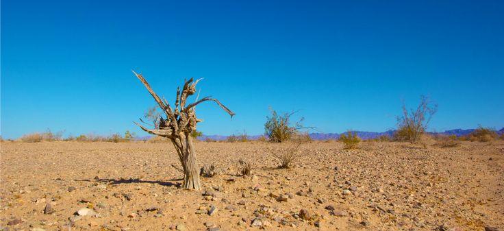 Effets du changement climatique | Ken Kistler via publicdomainpictures.net CC License by