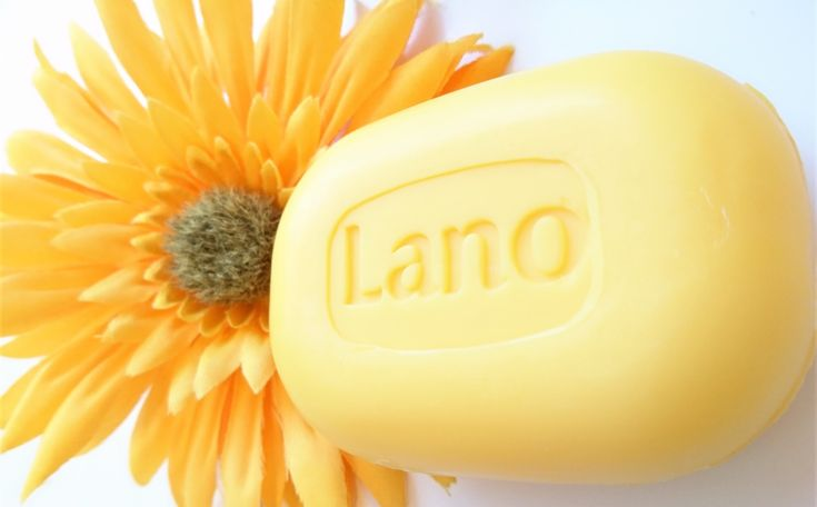 Lano+is+a+mild+and+creamy+hand+soap.+It+does+not+contain+parabens,+dyes+or+perfume+allergens,+and+the+pH+value+is+similar+to+the+skin's+own.+In+addition,+we+have+added+moisturizing+ingredients+that+the+skin+benefits+from.+Any+age.+It+has+been+dermatological+tested+on+sensitive+skin+and+has+been+a...