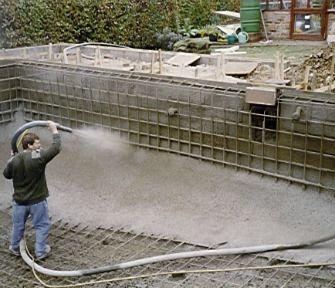 irregular shaped swimming pool design with modern backyard ...
