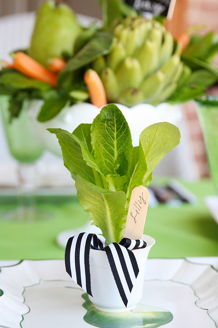 Homes.com - Eco friendly favors for guests_mini romaine lettuce plants ($4 for 8) divided into mini containers. A popsicle stick makes the perfect name card stuck down in the mini pot. Add an herb seed packet and you have the perfect favor for guests.