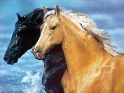 Horses: Beautiful Hors, Sea Hors, Fine Art, Paintings Out, Off Paintings, Hidden Hors, Gorgeous Hors, Wild Hors, Beautiful Creatures