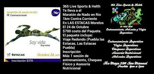 365 live sports