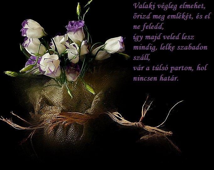 _emleket_orizzuk_annak_aki_elment_1286536_6437.jpg (682×542)