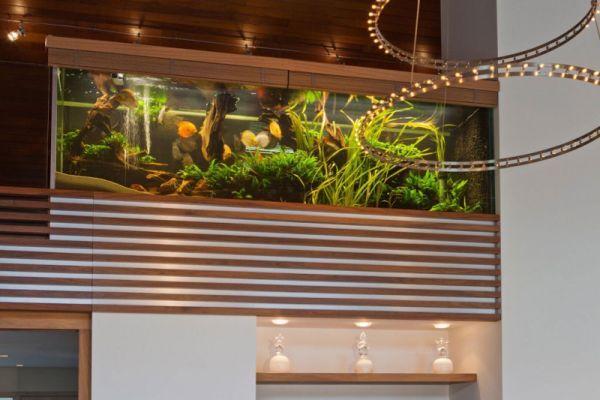 Beautiful villa with a spectacular aquarium