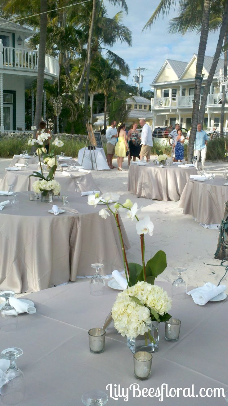 Potted orchid centerpieces for weddings orchids