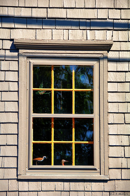 Window in Lunenburg, NS