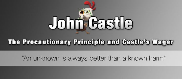 The Precautionary Principle and Castle's Wager