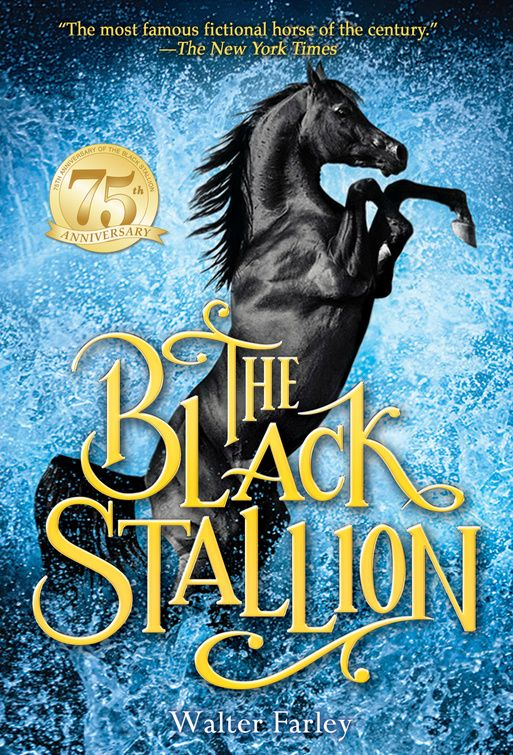 The Black Stallion – Black Stallion Ranch – The Official Fan Site By Tim Farley