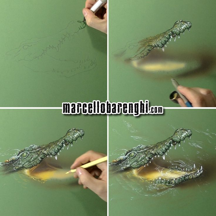 how to draw a crocodile youtube