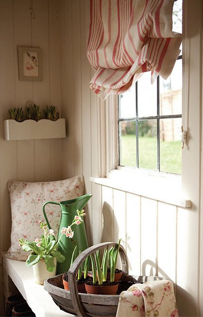 I want a little indoor garden like this..the crumply window decor is country cute too :)