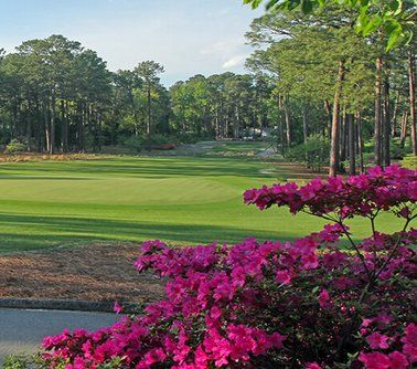 Grand Prize: A $1,100.00 2-night stay at the Homewood Suites by Hilton in Pinehurst, NC including full Suite Start breakfast, round of golf for two at the Talamore Golf Resort, round of golf for two at Tabacco Road and $200 gift card. Enter now.