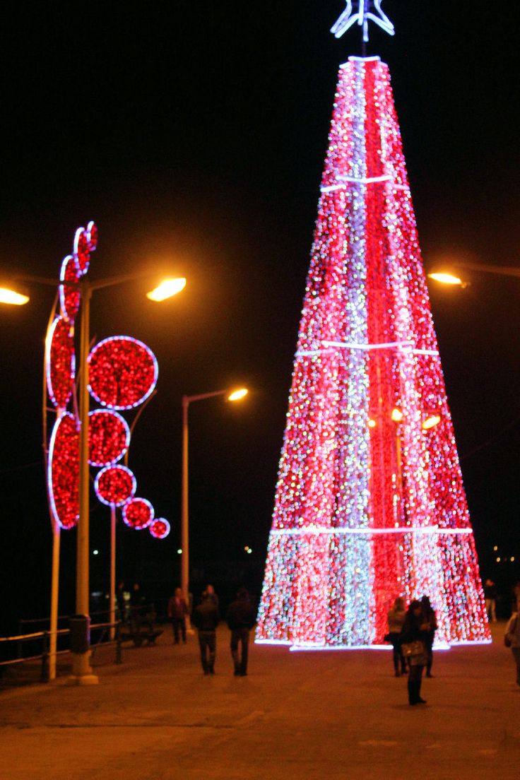 Christmas in Madeira