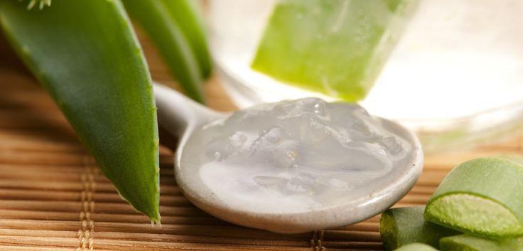 Oggi vedremo come ottenere un latte detergente a base di Aloe gel con pochi e semplici ingredienti. Siete pronti, dunque? Iniziamo!