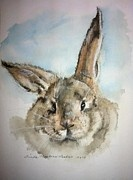 """""""Baby Bubby"""", watercolor . . . by Linda Hopkins Laakso"""