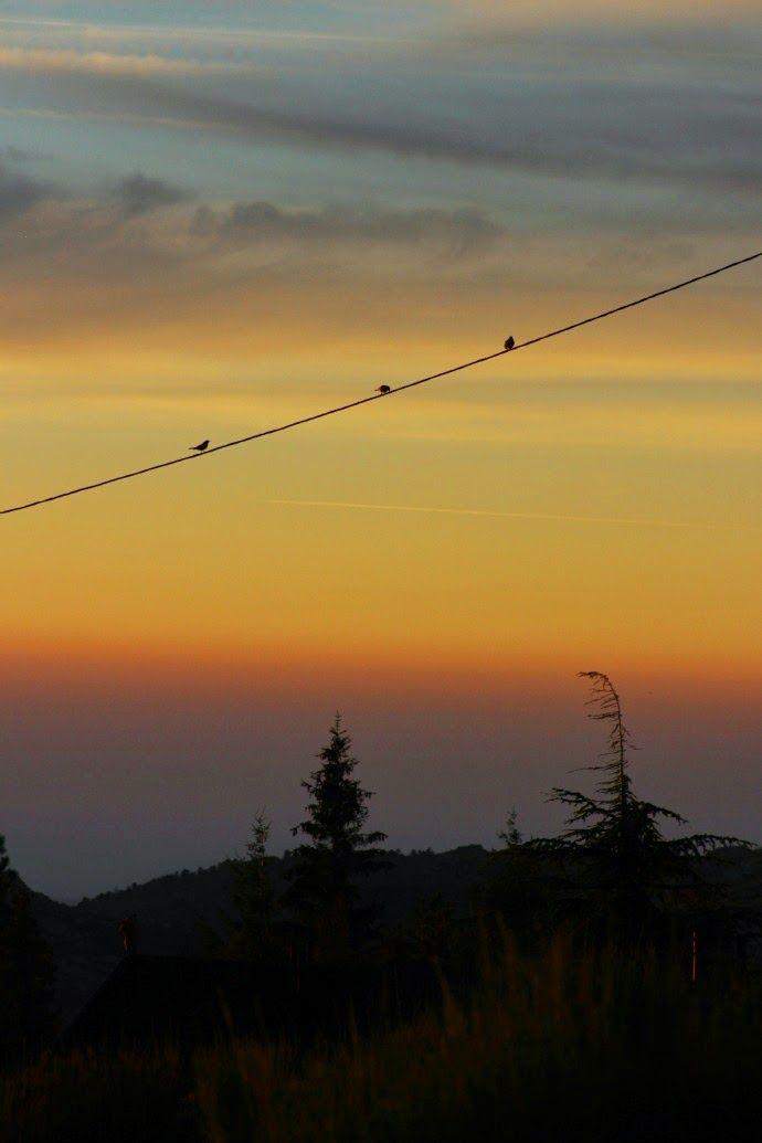 Deixa entrar o sol   Amanhecer em Manteigas :: Serra da Estrela   Portugal