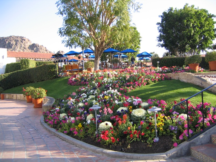 2136 Best Romantic Motivational And Inspirational Gardens