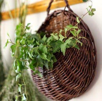 κρεμαστά καλάθια για φυτά