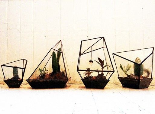 Geometric Terrariums from Assembly New York: Plants Can, Glasses Flowers, Decor, Geometric Terrarium, Green Thumb, Flowers Pots, New York, Geometric Shape, Modern Interiors