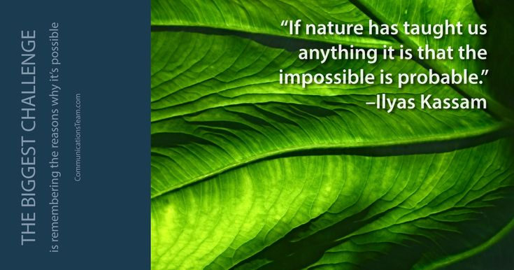 """If nature has taught us anything it is that the impossible is probable"" -llyas Kassam #rememberhow #rememberwhy #thebiggestchallenge #challenges #solutions #inspiration #motivation http://www.communicationsteam.com/inspiration-slides/"