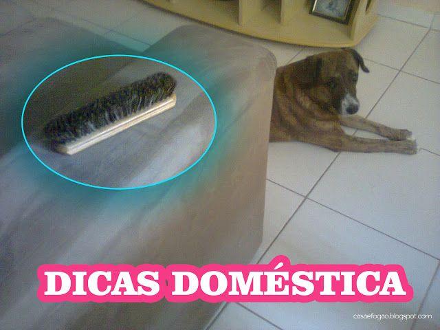Casa e Fogão: Como remover os pelos de cachorro do sofá