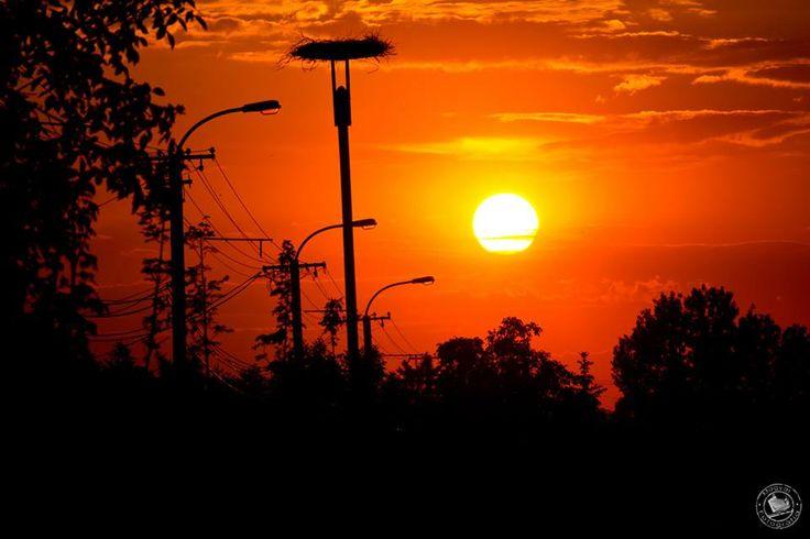 Naplemente - sunrise