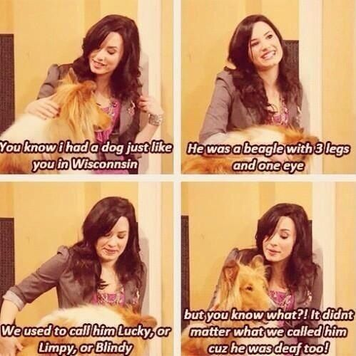sonny with a chance of dating quotes Learn about demi lovato: her birthday she also played sonny munroe in the disney channel's series sonny with a chance from 2009 to she began dating luke.