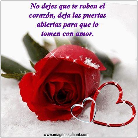 Imagenes Chidas Con Movimiento de Rosas y Corazones Con Frases De Amor