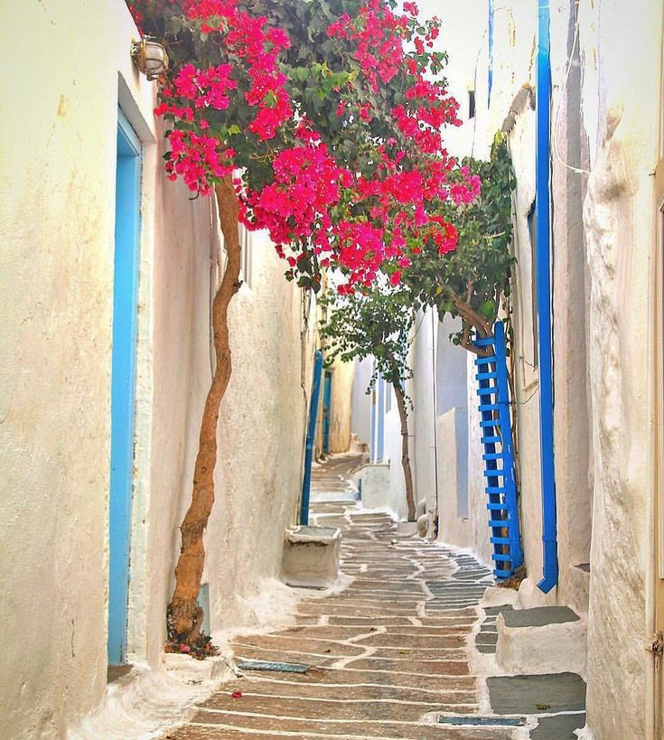 island of ios (Ίος) Imagine walking down this colorful alley ! Like a fairytale ...