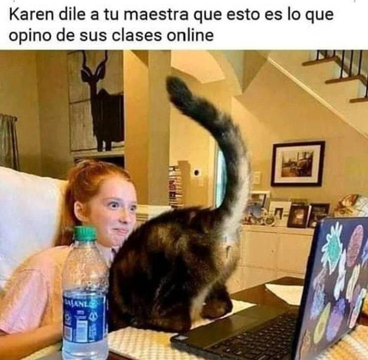 Karen Y Michi Parte 6 Memes Imagenes De Risa Memes Memes Divertidos