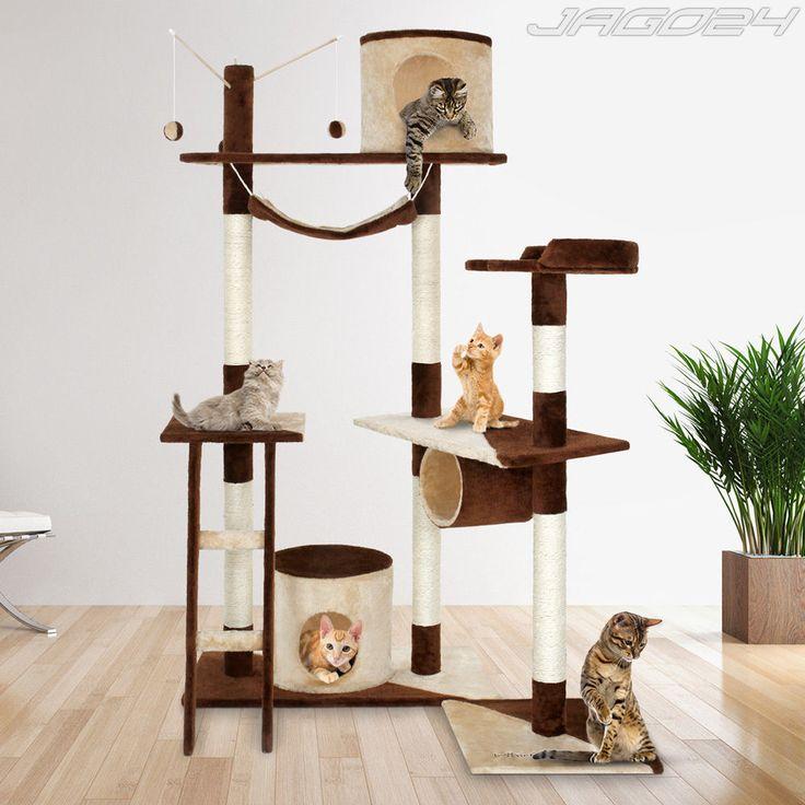 griffoir chat obligatoire