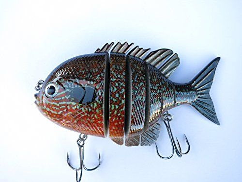173 best pesca images on pinterest for Blue bass fish