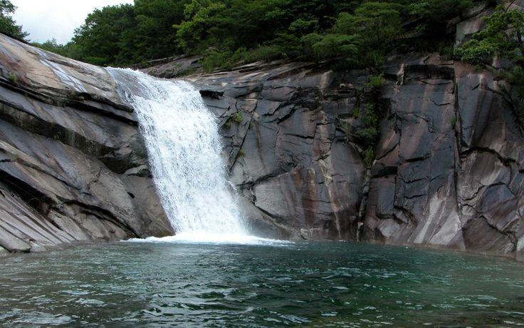 Lower Nyangombe Falls in Inyanga Rhodesia. Many fond memories of this place.