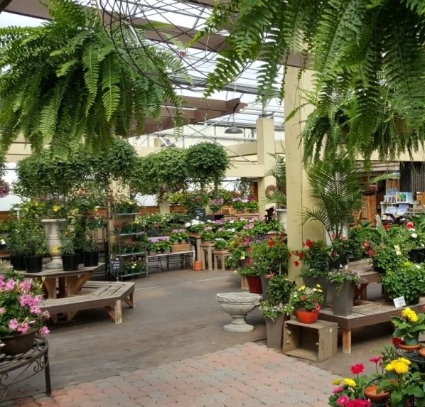 17 Best Ideas About Garden Centre On Pinterest House