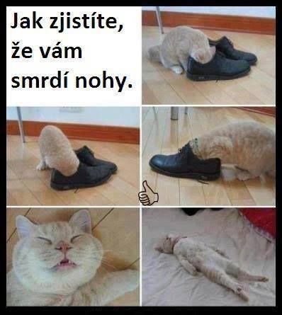 Jak zjistíte že vám smrdí nohy. How you can find out that your feet smell. Haha!