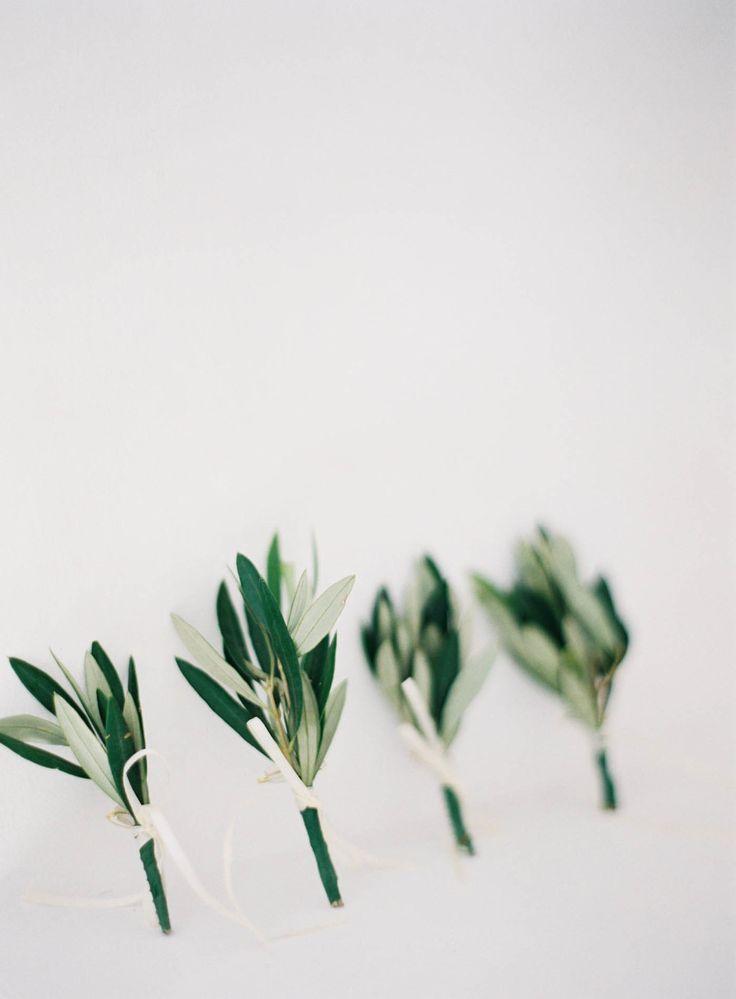 Pre Planned Flower Garden Designs: 25+ Best Green Boutonniere Ideas On Pinterest