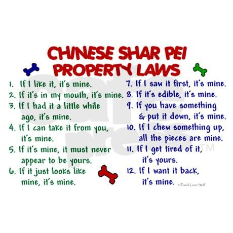 Chinese Shar Pei Property Laws